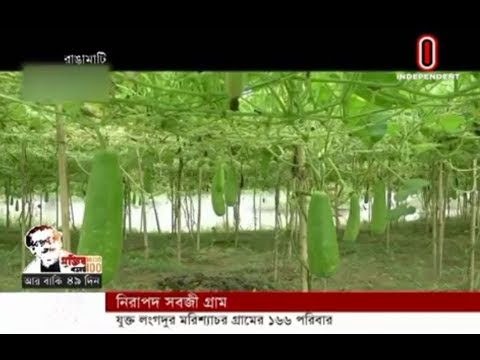 Village named 'safe-vegitable village' (27-01-2020) Courtesy: Independent TV