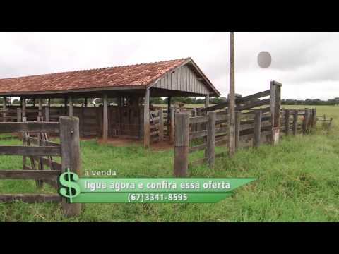 Fazenda à venda em Sonora MS com 1.210 Hectares