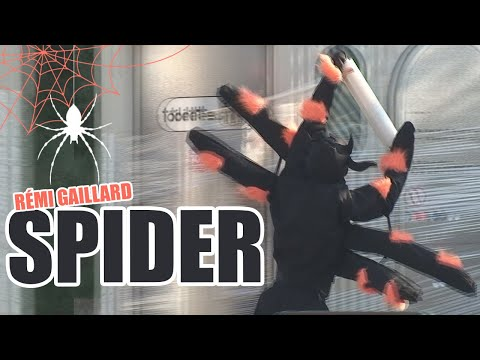 Remi Gailard As The Spider