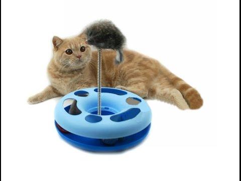 Игрушка круг для котов