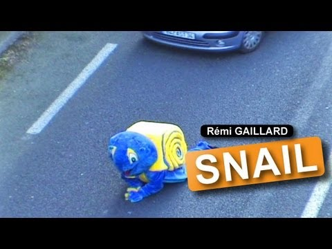The snail (R�mi GAILLARD) Video