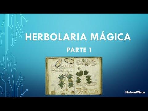 herbolaria - Variedad de plantas y sus propiedades mágicas.