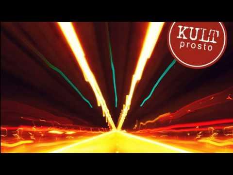 Tekst piosenki Kult - Zabiłem ministra finansów po polsku