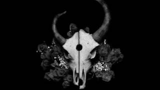 Demon Hunter - Beauty Through The Eyes Of A Predator