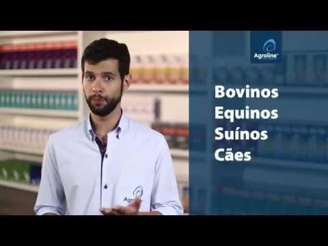 Flunixina UCBVET, conheça as vantagens deste potente anti-inflamatório - agroline.com.br