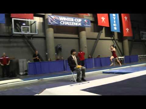 Cale Robinson - Vault - 2011 Winter Cup Challenge Finals, 3rd, 15.85