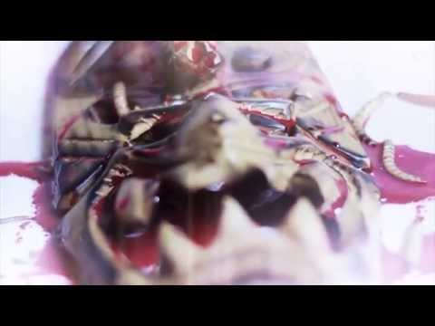 Perversity - Perversity - Goddess Of Maggots (OFFICIAL VIDEO)