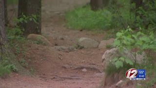 10. Dangerous wire being strung across trails in state parks