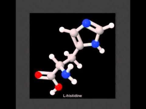 La L histidine
