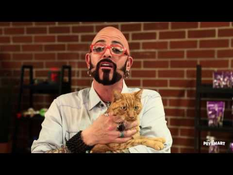 Pet supplies accessories and products online petsmart for Jackson galaxy da bird