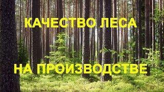 Проверка качества леса на производстве