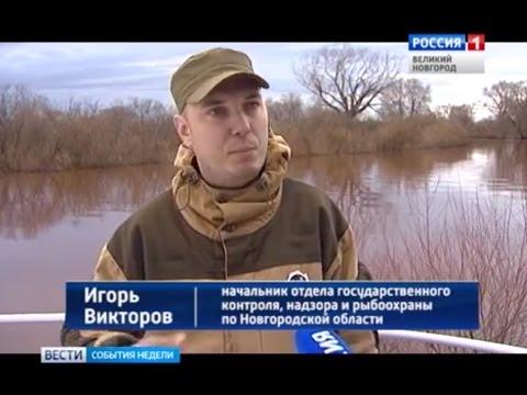 Под контролем новгородской рыбоохраны прошли независимые научные исследования на озере Ильмень