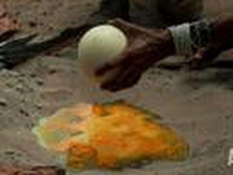 cách tráng trứng có 1 không 2 trên thế giới (chuyện lạ)