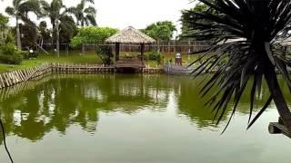 Video Semarang Island Restoran Dan Pemancingan MP3, 3GP, MP4, WEBM, AVI, FLV Desember 2017