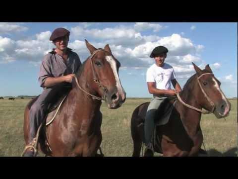 Gaucho Cattle Roundup