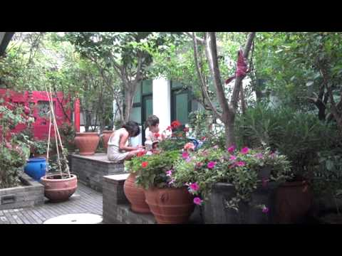 Video avPeking Yard Hostel