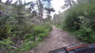 10. Riding a Polaris Rzr XP 4 1000 down Pioneer Trail in Red River, NM