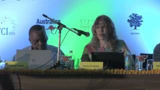 Diane Kingston - INTAR IndiaUNCRPD Plenary