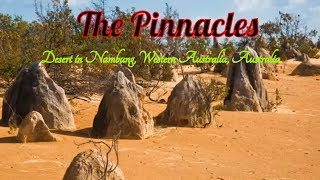 Cervantes Australia  city photos : Visit The Pinnacles | Desert in Pinnacles Drive | Cervantes WA 6511 | Australia
