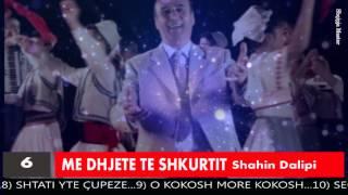 Shahin Dalipi  ME DHJETE TE SHKURTIT