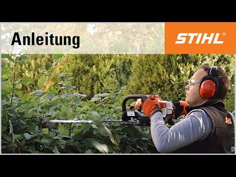 Schnitt-Technik Benzin-Heckenschere: Rückschnitt mit der STIHL HS 81 R