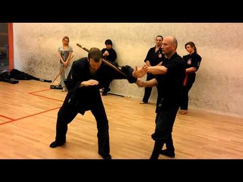 Myogu dojo taijutsu and hanbo seminar