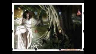 video y letra de Como quisiera volver (audio) por Los Temerarios