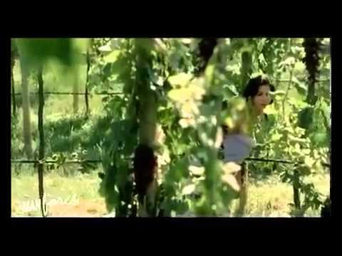 Video Sunny Leone Manforce Condoms Black Grapes UNCENSORED Full AD download in MP3, 3GP, MP4, WEBM, AVI, FLV January 2017