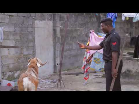 Police Man Arrested a Goat for...MC RATATA EPISODE 7/PAN AFRICA TV UNPLUG