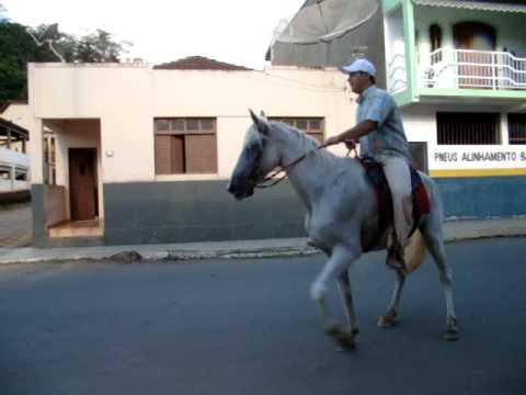 CAVALO MARCHADOR BAO DE REDEA GASPAR ITARANA