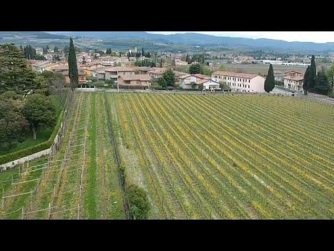 #euroadtrip20ημέρα: Το ξακουστό για τα κρασιά του Βένετο