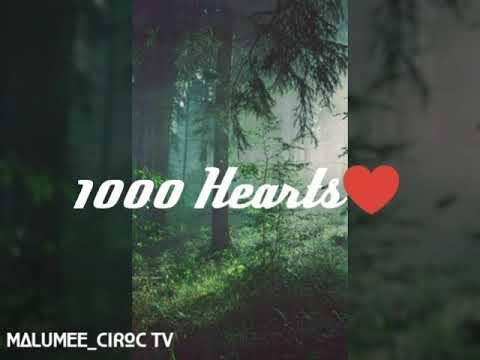 Xoli M - 1000 Hearts Lyric Video : MalumeCirocTV