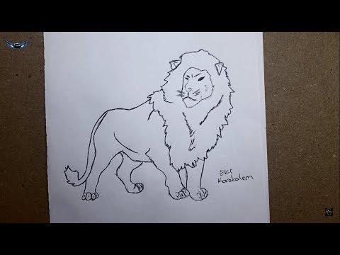 Download Adım Adım Kolay Karakalem Aslan çizimi Nasıl Yapılır Mp3 Mp4