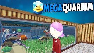 BIGGER & BETTER Aquarium BUILDING & More MONEY   Megaquarium Gameplay 2