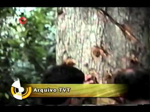 Líder do movimento camponês é morto em Corumbiara - Rede TVT