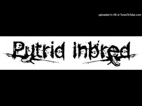 Putrid Inbred -  You, Me and Taxidermy