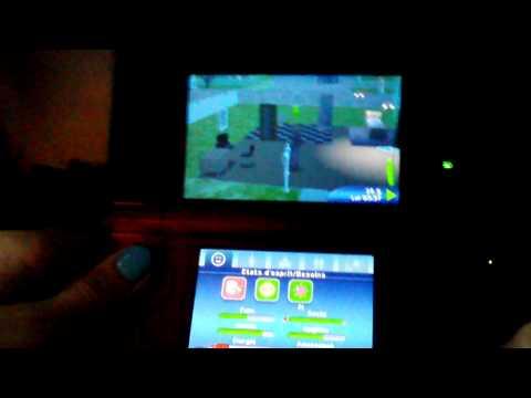 L'Academie des Animaux Nintendo DS