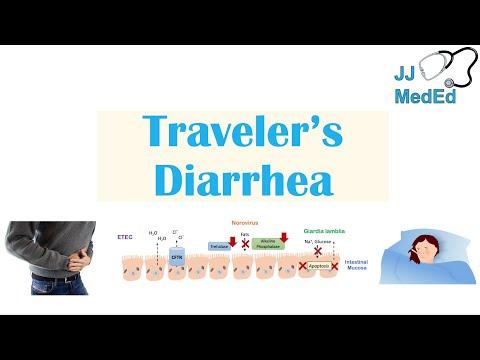 Traveler's Diarrhea | Causes (Bacteria, Viruses, etc), Risk Factors, Symptoms, Diagnosis, Treatment