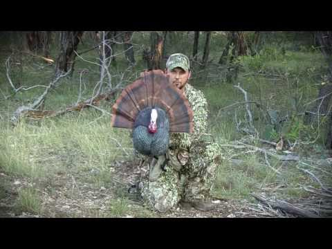 Savage Outdoors Thunder Chicken Promo