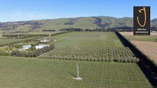 Martinborough New Zealand  city photos gallery : Julicher Estate Te Muna Valley Martinborough New-Zealand HD