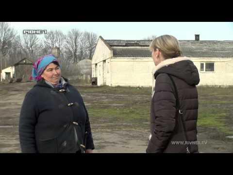 """Чому пайовики """"Мирогощанського державного іподрому"""" на Рівненщині досі не отримали свої землі? [ВІДЕО]"""