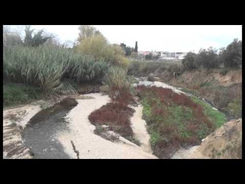 Nereto, la strana colorazione del torrente Vibrata VIDEO