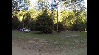 Upper Allyn Australia  city photos gallery : Telegherry Forest Park Camping Ground, Upper Allyn