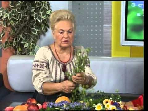 "Бібліотека: ""Наталя Земна у Львові"" Передача №9"