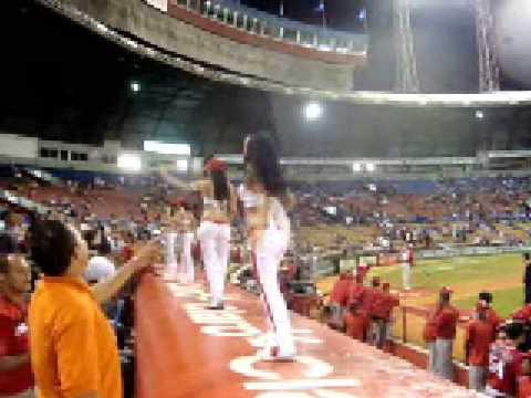 Inicia beisbol en la Republica Dominicana al estadio todo el mundo.
