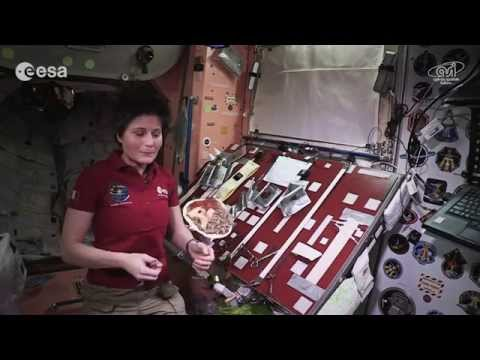 ESA astronaut Samantha Cristoforetti Demonstrates How to Make a Meal in