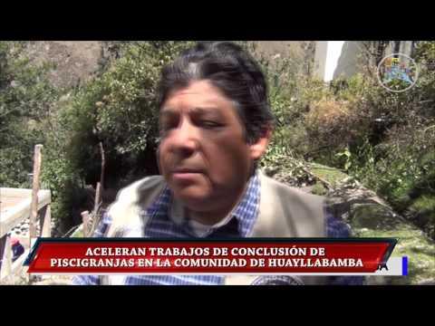 TRABAJOS DE CONCLUSIÓN DE PISCIGRANJAS EN LA COMUNIDAD DE HUAYLLABAMBA
