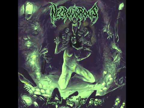 Necrovorous - Funeral For The Sane - 05 - Deathknells online metal music video by NECROVOROUS