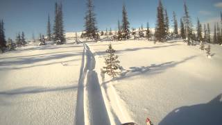 5. 2006 rmk 700 caribou hills