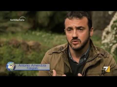 I guardiani della terra dei fuochi - Antonio Amendola